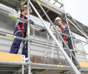 Scaffold builder online course